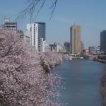 神楽坂、市ヶ谷、飯田橋周辺